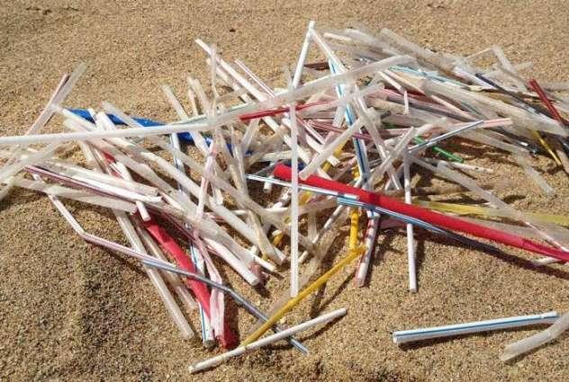 AB, Tek Kullanımlık Plastiğe Yasak Getiriyor