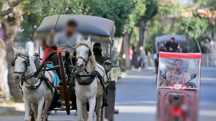 Cumhurbaşkanı Erdoğan Hayvanseverleri Mutlu Edecek Müjdeyi Verdi