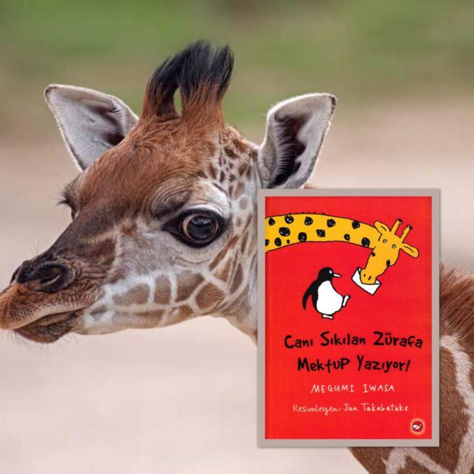 Yaz Tatilinde Çocuklara Okuyabileceğiniz Tavsiye Kitaplar