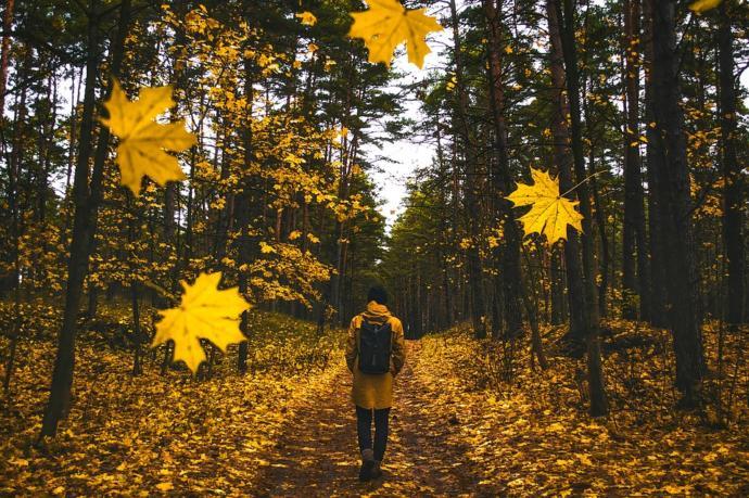 Sonbaharda Nereye Gidilir, Ne Yapılır?