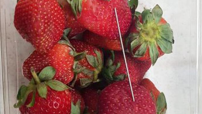 Avustralya'da Meyvelere Saklanan İğne Korkusu Büyüyor