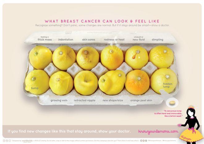 Farkındalığı artırmak adına limonlarda gösterilen meme kanserinin çeşitli belirtileri.