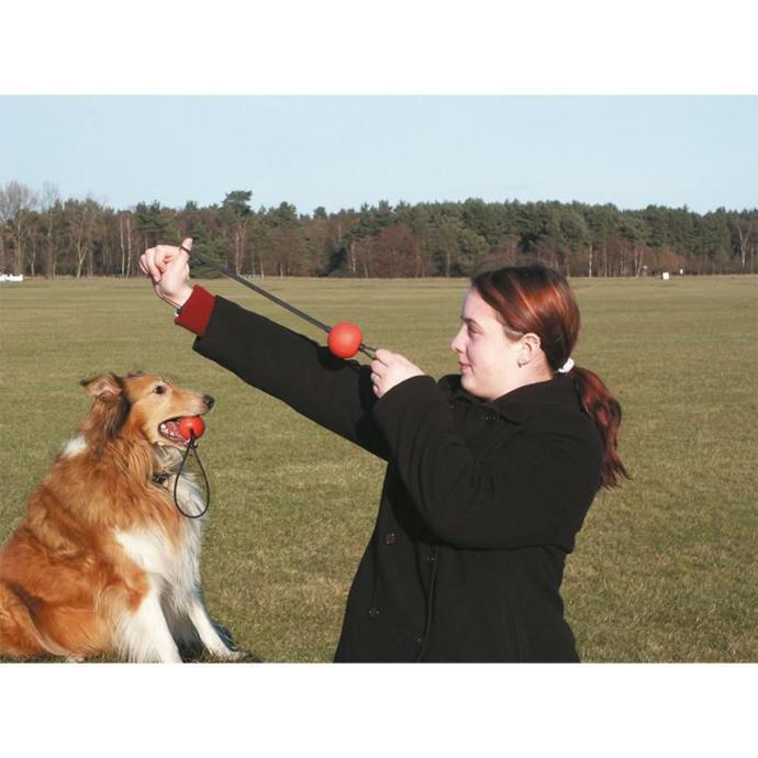 Karlie Köpek Oyuncağı Top Fırlatma