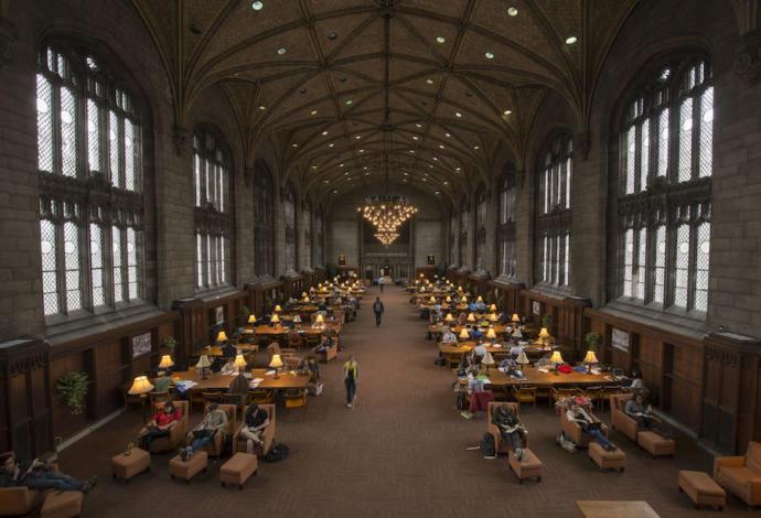 Şu kütüphanenin güzelliğine bak.