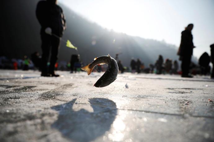 Sancheoneo Festivali