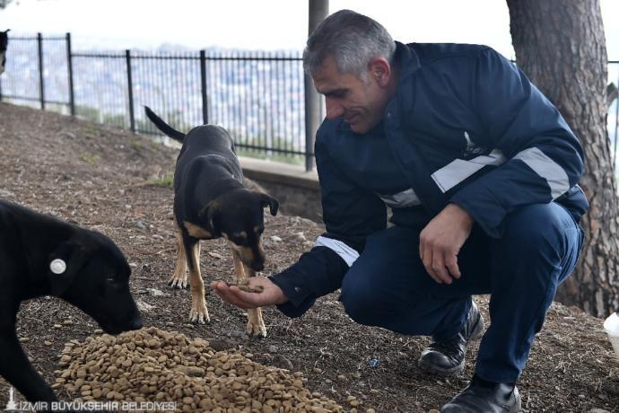 İzmir Büyükşehir Belediyesi Sokak Hayvanlarını Unutmadı!