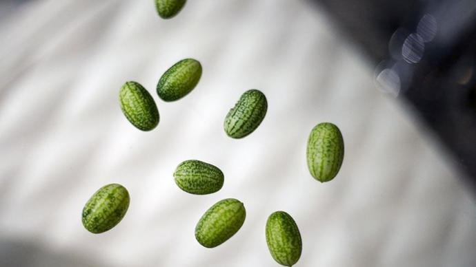 Bu Fotoğraftaki Meyvenin Ne Olduğunu Öğrenince Çok Şaşıracaksınız
