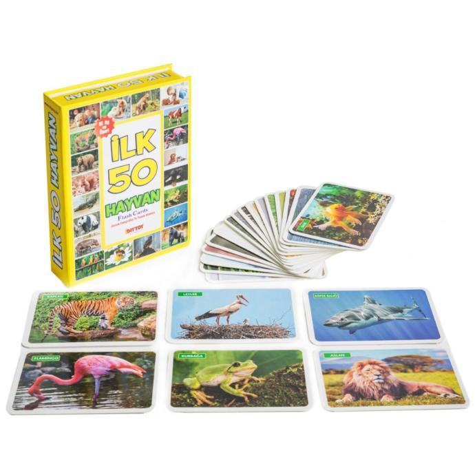 Diy Toy Eğitici Kartlar 4 lü Set