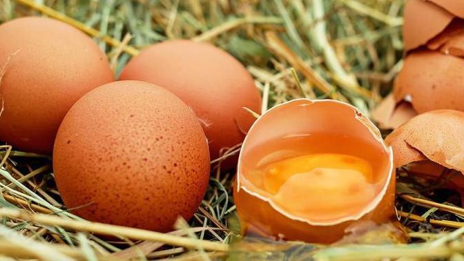 Bu Yumurtalar Kanseri Tedavi Edecek!