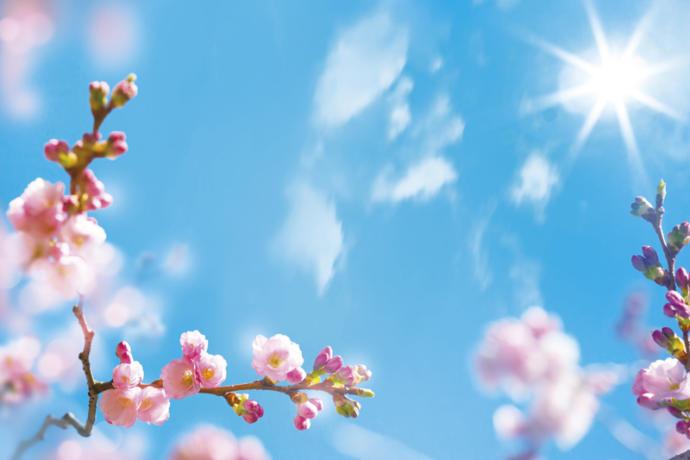 Kışlıkları Kaldırıp Tatil Planlarını Yapmanın Zamanı, Cemre Mevsimi!