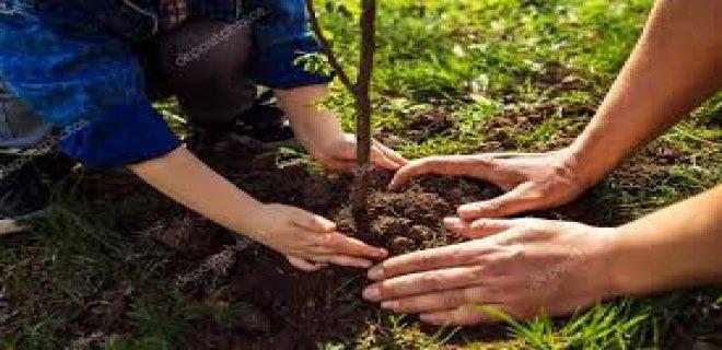 Baharın Gelişiyle Birlikte Çocukların Dışarıda Enerjilerini Atacağı 6 Aktivite