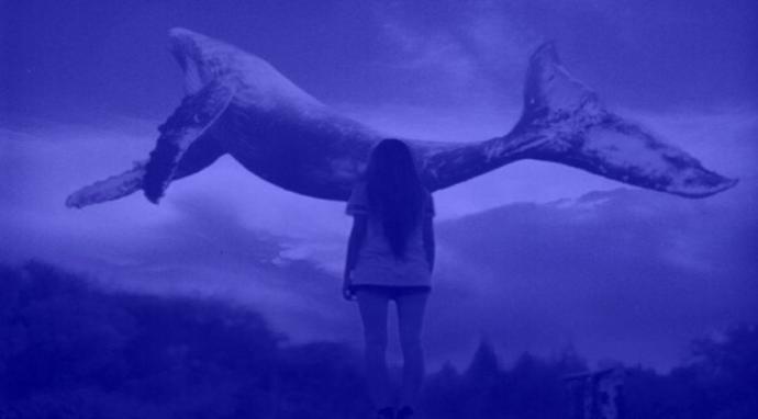 'Mavi Balina' Ölümleri Devam Ediyor (Van'da 14 Yaşında Bir Kız Çocuğu İntihar Etti)