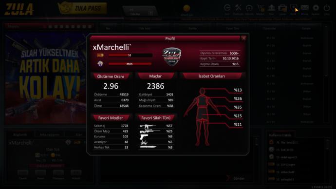 Oyuncu profili.