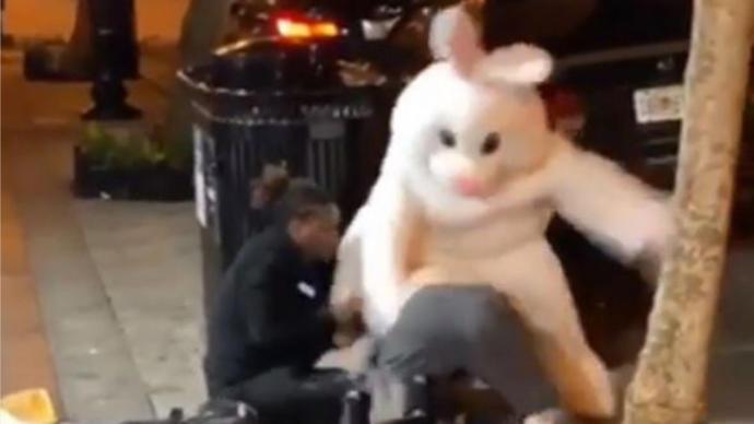 'Paskalya Tavşanı' Ayırmak İçin Karıştığı Kavgada Taraf Oldu