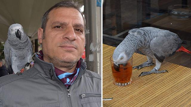 Papağanı da Kendimize Benzettik, Çay İçmeden Duramıyor