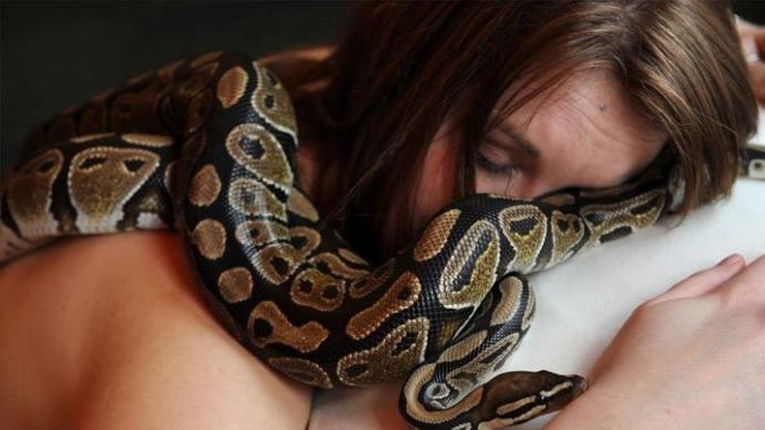 Bu Hayvanları Evde Beslerken Bir Daha Düşünün!