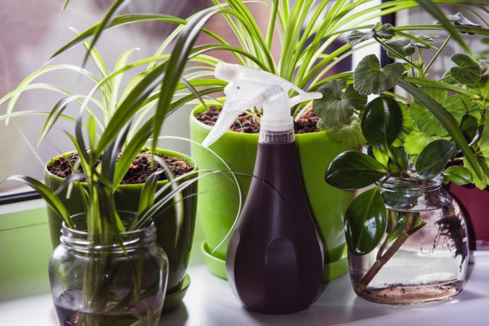 Evinizde Kimyasal Ürünlerin Etkisini Azaltacak Uygulaması Basit Püf Noktalar!