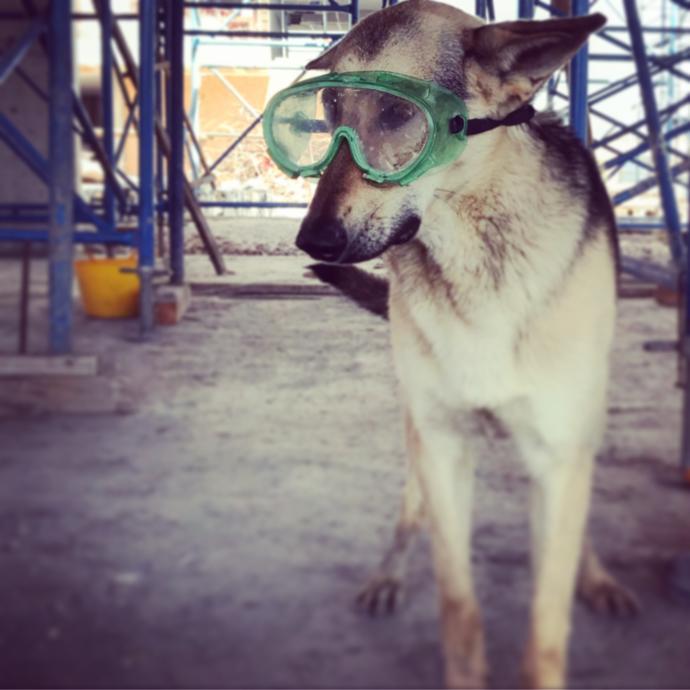 İş güvenliği gözlüğü.