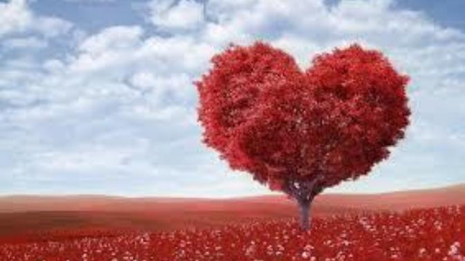 Sevgi ve sevilmek