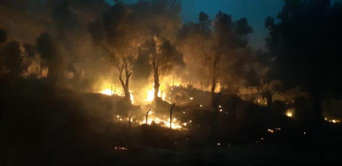 Muğla Belediye Başkanı Osman Gürün, Dalaman'da Çıkan Yangın Hakkında Açıklama Yaptı