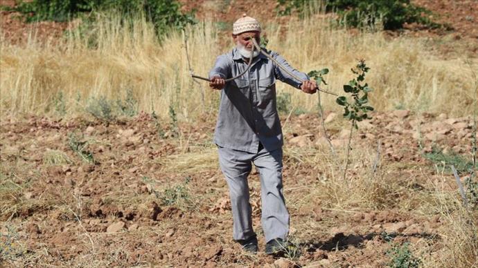 Mehmet Ali Açık Ağaç Dalları ve Bakır Telle Su Buluyor