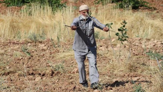 Elinde Ağaç Dallarıyla Gezerek Su Kaynaklarını Tespit Ediyor!
