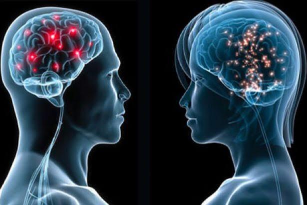 Kadın ve Erkek Neden Asla Birbirini Anlamaz? Bu Soru İşaretini Giderecek Bilimsel Yanıtlar