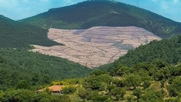 Bakanlık, Kaz Dağları'nda Yapılan Ağaç Kesimiyle İlgili Açıklama Yaptı (Altın Madeni)