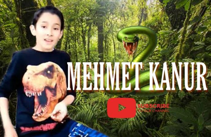 Youtube'un Küçük Korkusuz ve Hayvan Dostu Youtuber'ı: Mehmet Kanur