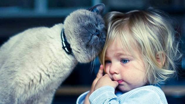 4 Ekim Dünya Hayvanları Koruma Günü Vesilesiyle Bir Gün Değil Her Gün Hayvanları Koruyalım!