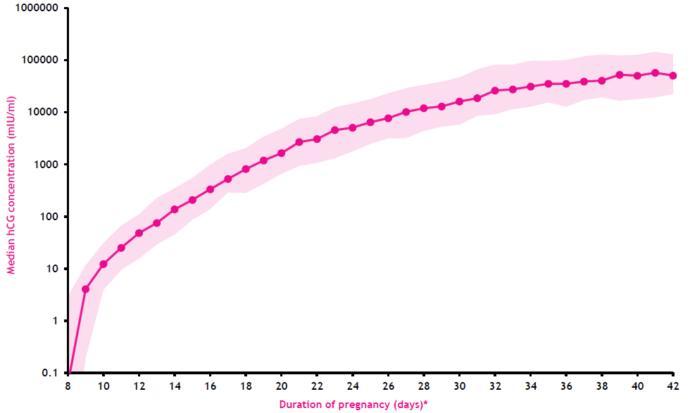 Nedir Bu HCG? Kanda Gebelik Testi İle İlgili Her Şey!
