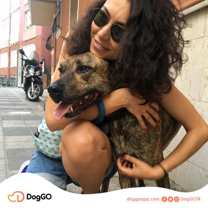 Profesyonel Köpek Gezdirme Uygulaması DogGO'nun Kurucu Ortağı Cansu Tokuç ile Röportaj Yapıyoruz!