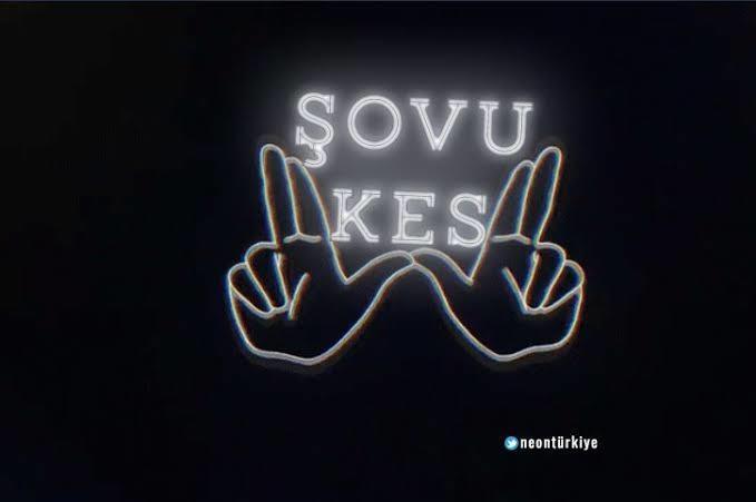 Her Şairin Bir Hikayesi Vardır: Türk Şairlerin Gülümseten Şiirleri ve Hikayeleri!