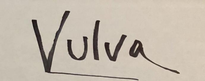 Vulva Bakımı Nasıl Yapılmalıdır?