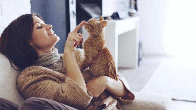 Kedinle Beraber #EvdeKal! Kedi Sahibi Olmanın Birbirinden Güzel 6 Özelliği