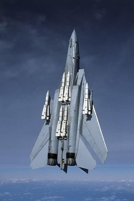 Multi AA füzeleri ile görünen F-14