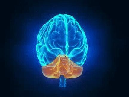 İnsanları Etki Altına Alan Beyin Sisi Nedir Ve Neler Yapılmalı?