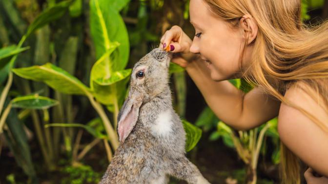 Hayvanlara Karşı İyi Kalpli Olalım! İyi Kalpli Bir Cilt Bakım Markasında Bulunması Gereken 5 Özellik