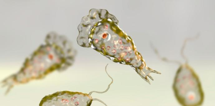 Korona Virüs ile Başlayan Serüven Süper Enfeksiyonla Devam Ediyor! Dünyada Neler Oluyor?