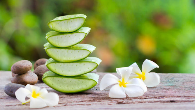Aloe Veranın Mucizevi Özelliklerinden Faydalanabileceğin 6 Alan