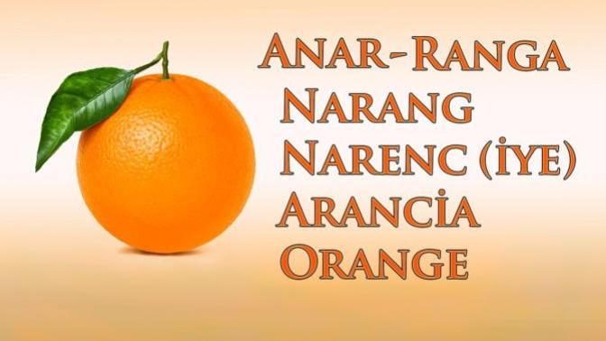 Portakalın Adı Nereden Geliyor?