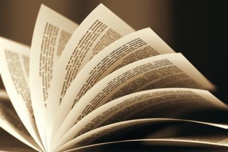 Akademik okumalar