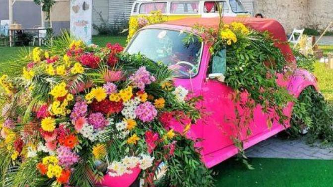 Doğaya Kucak Açın: En Renkli Çiçek Festivalleri