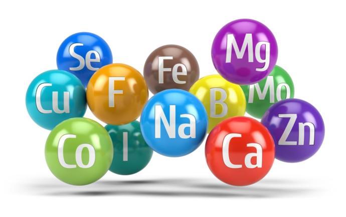 Güçlü Bir Bağışıklık İçin Akıllı Minerallerin 6 Faydası