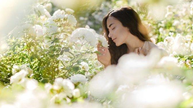 Cilt Bakımında Faydalı Çiçekler ve Cilde Uygulanışı!