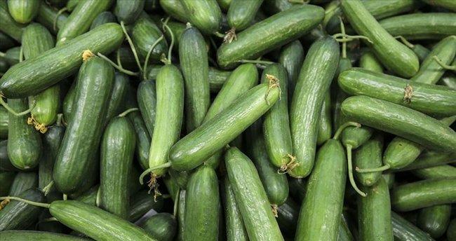 Hayatımızdan Acil Çıkması Gereken İnsandan Hallice Sebzeler!