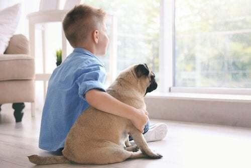 Çocuklar İle İyi Anlaşan 5 Köpek Cinsi!