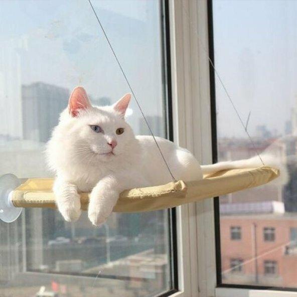 Kedi Cam Önü Yatağı