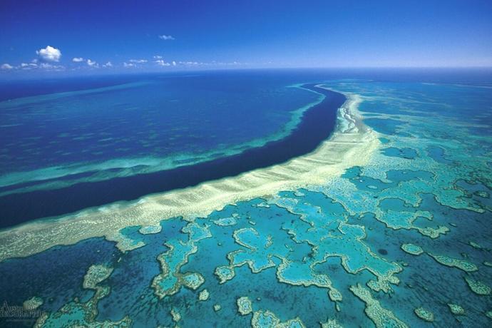 büyük bariyer resifi