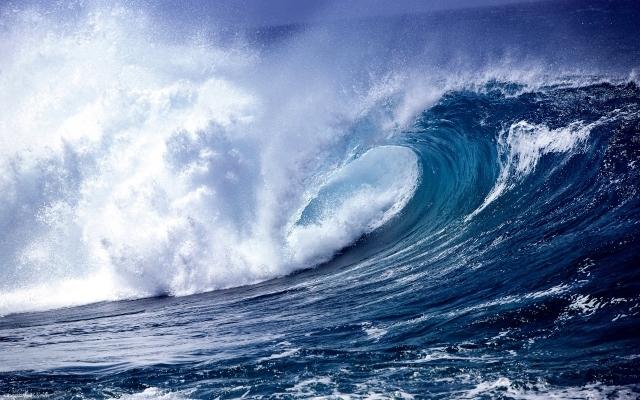 Deniz İnsan Hayatının Kopyasıdır